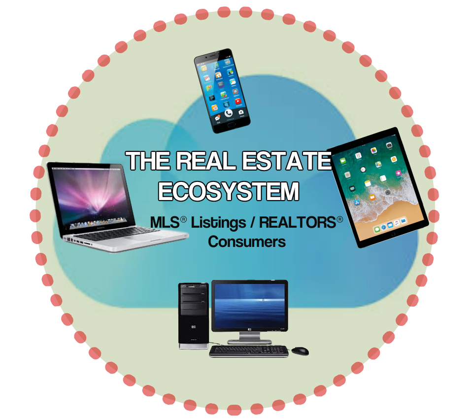 Saba Realty real estate ecosystem